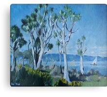 Cabbage trees, Lake Wairarapa, North Island, New Zealand Canvas Print