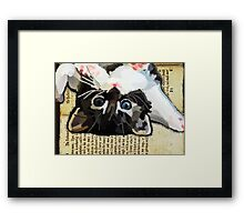 Kittens and books Framed Print