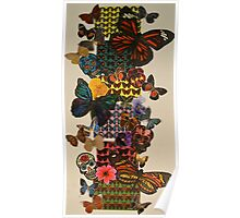 Butterflies silk and photography piece Poster