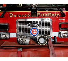 Cubs! Photographic Print