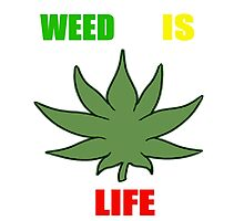 Weed Is Life - Marijuana - Mary Jane - (Designs4You) - Stoner Photographic Print