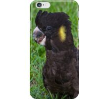 Curious Baby  iPhone Case/Skin