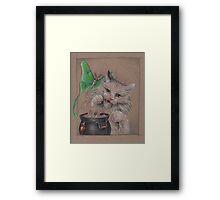 Kitty Cauldron Framed Print