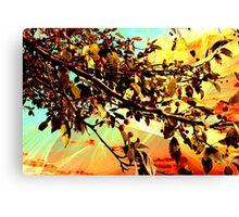 Flamboyant Nature 2 Canvas Print