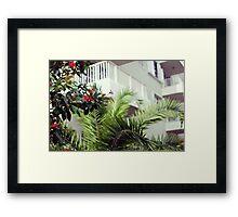 Blooms No.2 (Miami) Framed Print