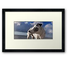 One more looking back Framed Print