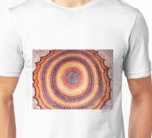 Fire Healing Circle Unisex T-Shirt