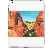Outback print  iPad Case/Skin
