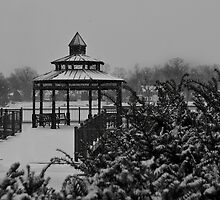 Snow on Lake George by Victoria Jostes