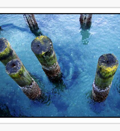 lichen pilings Sticker