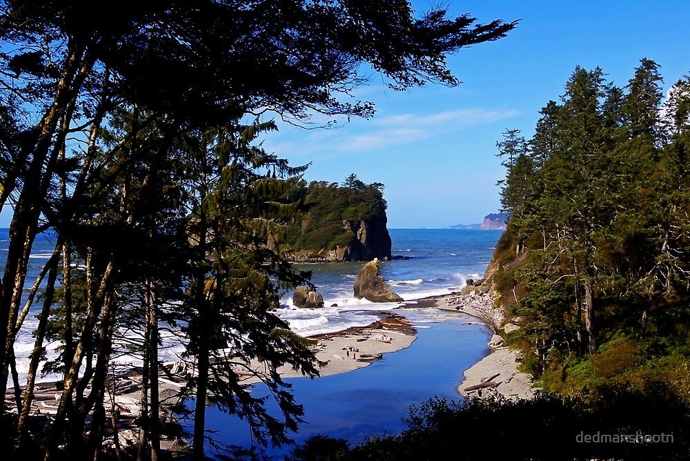 ruby beach, washington, usa landscape by dedmanshootn