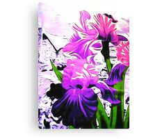 The Purple Brigade Canvas Print