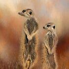 Which way! by Lyn Darlington