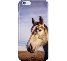 An Irish Horse iPhone Case/Skin