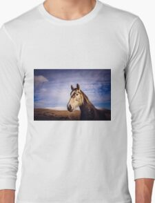 An Irish Horse Long Sleeve T-Shirt