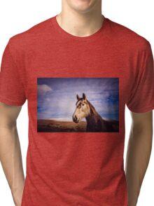 An Irish Horse Tri-blend T-Shirt