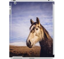 An Irish Horse iPad Case/Skin