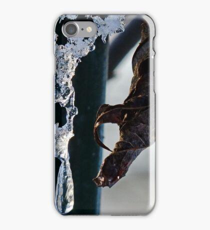 Snow & Ice iPhone Case/Skin