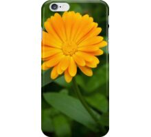Yellow flower and green leaves iPhone Case/Skin