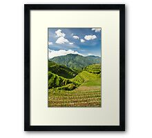 Landscape of rice terraces in china Framed Print