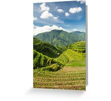 Landscape of rice terraces in china Greeting Card