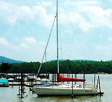Docked On The Hudson River by Susan Savad