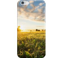 Tranquil grassland and trees at sunrise iPhone Case/Skin