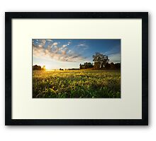 Tranquil grassland and trees at sunrise Framed Print