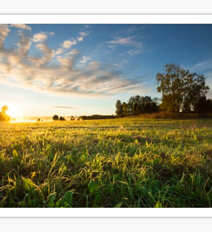Tranquil grassland and trees at sunrise Sticker