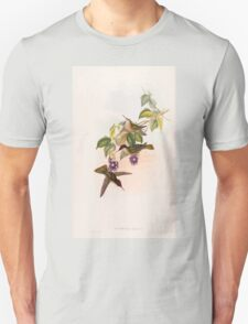 A monograph of the Trochilidæ or family of humming birds by John Gould 1861 V4 258 T-Shirt