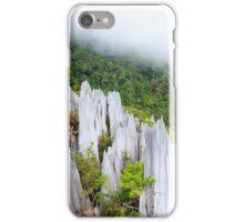 Limestone pinnacles at gunung mulu national park iPhone Case/Skin