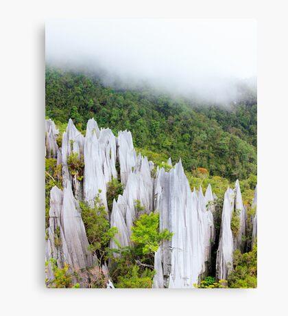 Limestone pinnacles at gunung mulu national park Canvas Print
