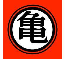 Martial Arts Island Master Photographic Print