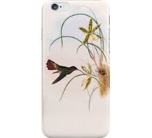 A monograph of the Trochilidæ or family of humming birds by John Gould 1861 V1 160 Glucis Hirsutus iPhone Case/Skin