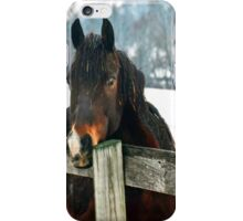 Thoughtful Horse iPhone Case/Skin