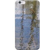 Reflexion On Lake Long iPhone Case/Skin