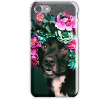 Flower Power, Kaylee iPhone Case/Skin