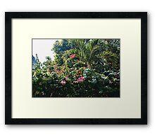 Palms + Pretty Pink Flowers (Havana) Framed Print