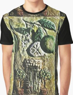 Exclusive: My Creations Artistic Sculpture Relief fact Main 5  (Painting & Digital Art ) (c)(h) by Olao-Olavia / Okaio Créations Graphic T-Shirt