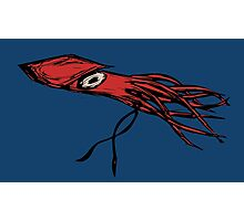 Squid Photographic Print