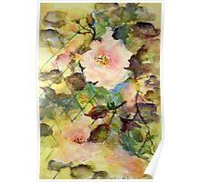 Lattice Roses Poster