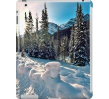 The Road To Spray Lakes, Alberta. Canada iPad Case/Skin