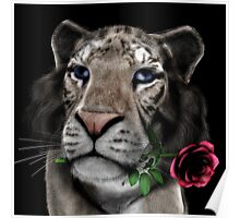 White Tiger With The Pink Rose Poster