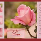 Happy Valentine's day - Pink rose bud - card by steppeland