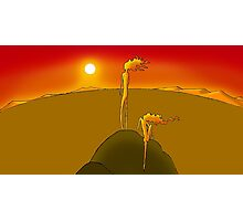 lion men staring at the sunset Photographic Print