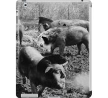 City Girl Visits the Country iPad Case/Skin