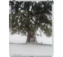 Beautiful winter snowy landscape with fog, alsacien mountains iPad Case/Skin