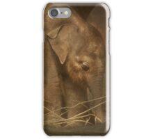 Close to mom... iPhone Case/Skin