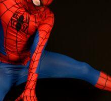 Spider Man Cosplay  Sticker