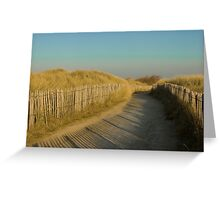 Path through the dunes Greeting Card